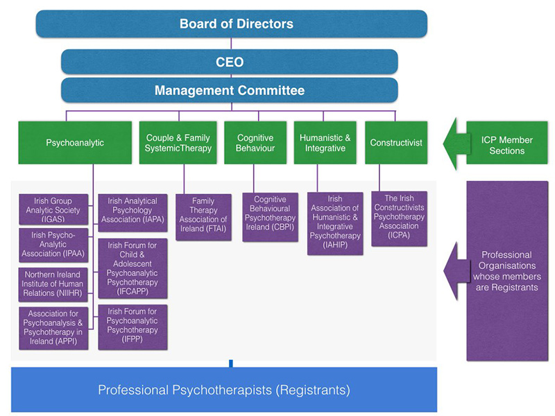 ICP Organisation Structure